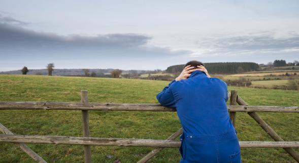 """Résultat de recherche d'images pour """"suicide en agriculture"""""""