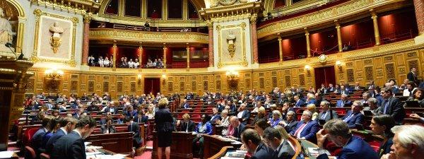 Le Sénat vote l'interdiction du port du voile aux mères accompagnatrices, sur fond d'attentat islamophobe