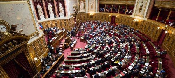 Affaire Benalla. Le Sénat demande à la Justice d'enquêter sur trois proches de Macron