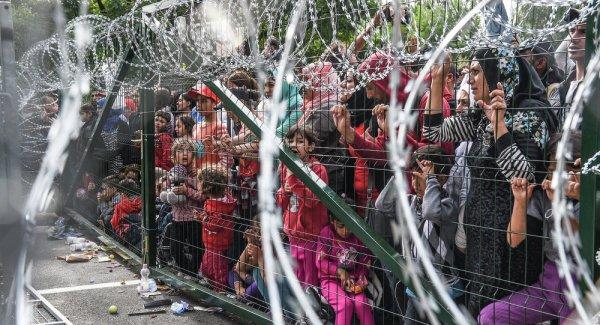 Crise migratoire : l'Union Européenne divisée autour de la quantité de barbelés à mettre aux frontières