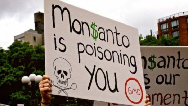 L'Assemblée Nationale rejette un amendement visant à l'interdire le Glyphosate
