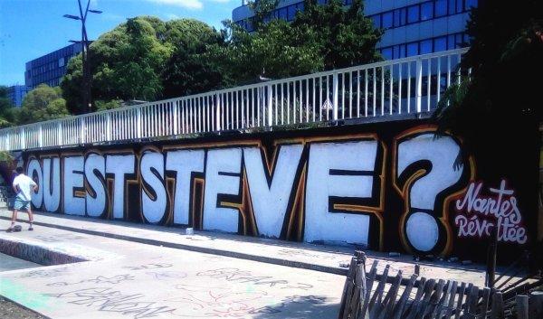 Scandale de la disparition de Steve à Nantes : le Défenseur des droits contraint de sortir du silence