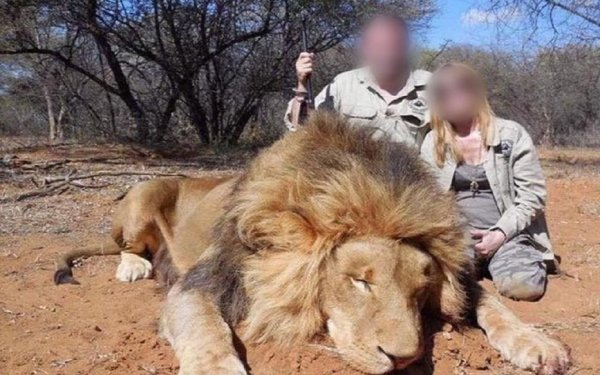 Des safari-chasse pour les patrons, l'exploitation et la misère pour la classe ouvrière dans les bagnes salariés !