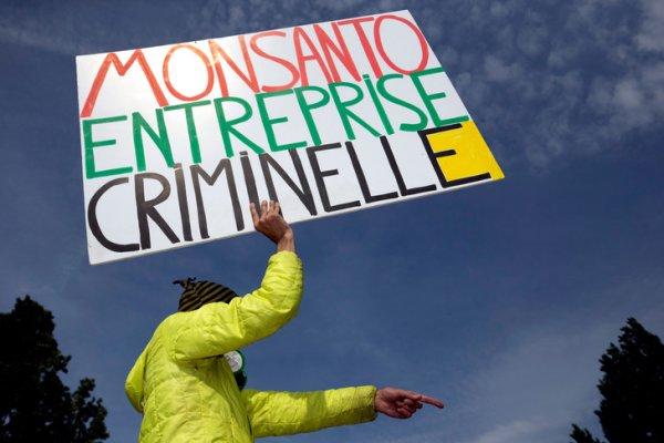 Paul François obtient gain de cause contre Monsanto, mais le combat n'est pas fini.