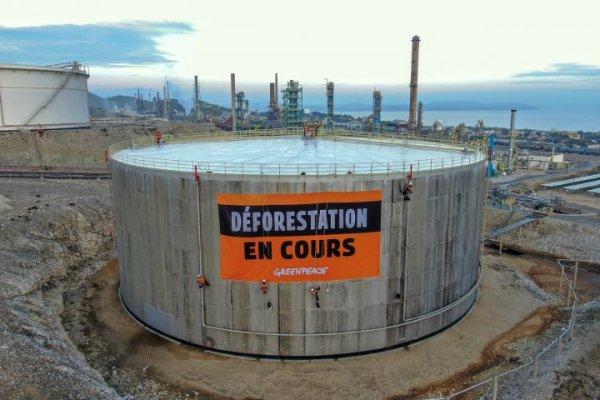 Quand Total se met au « vert » : le scandale de la Mède et de l'huile de palme