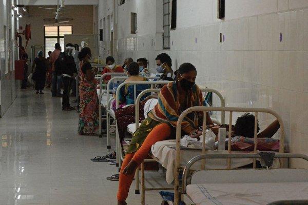 « Champignon noir » : Une nouvelle infection naît de la catastrophe sanitaire en Inde