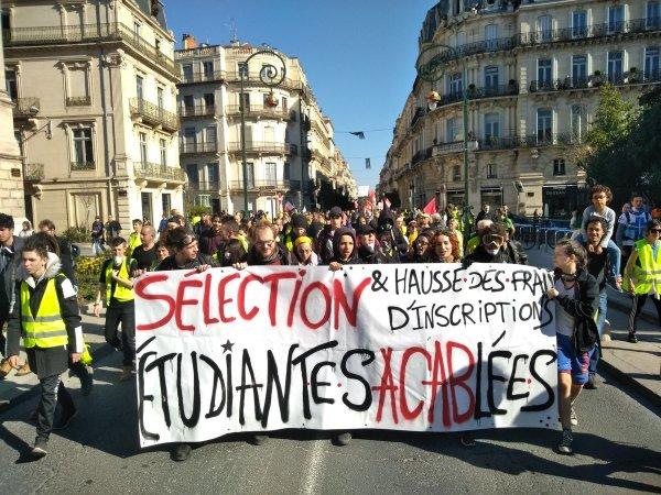 Acte XV à Montpellier, le mouvement des Gilets jaunes ne s'essouffle pas